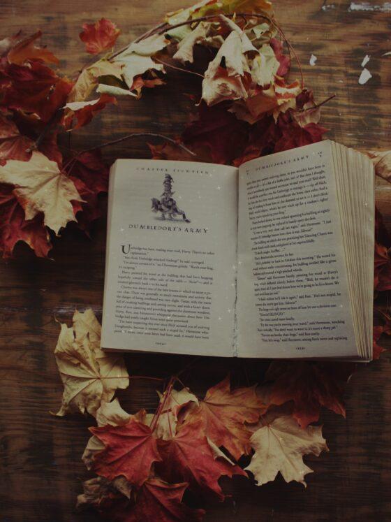 Fantasy Bücher für Jugendliche